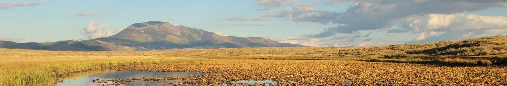 grays lake landscape
